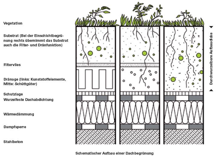 Gründachstrategie-Behörde für Umwelt und Stadtentwicklung BUE, Behörde für Umwelt und Stadtentwicklung, Hamburg
