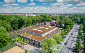 Gründach auf Hamburger Sparthalle